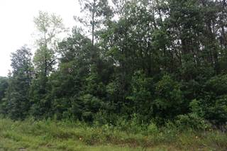 Land for sale in 000 FAIRVIEW Road, Alford, FL, 32448