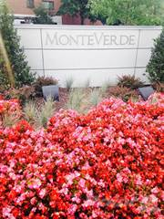 Apartment for rent in Monte Verde, Baltimore City, MD, 21215