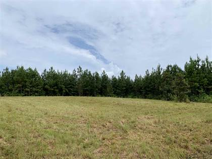 Lots And Land for sale in 0 TOWER RD, Hazlehurst, MS, 39191