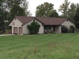 Single Family for sale in 3555 Iuka Road, Iuka, IL, 62849