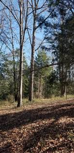 Lots And Land for sale in 62 N. Cross Rd., Buckatunna, MS, 39322