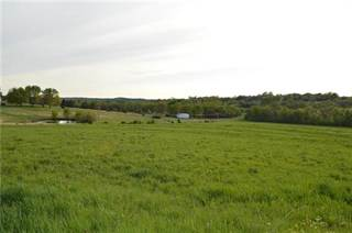 Farm And Agriculture for sale in Trac 4 E Round Prairie Road, Greater Blue Springs, MO, 64075