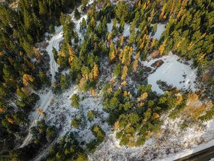 Lots And Land for sale in 4274 Fairfield Rd, Plummer, ID, 83851