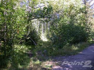 Land for sale in Quesnel Lake / Semi Waterfront  Horsefly Bay, BC, Horsefly, British Columbia