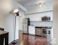 Photo of 832 Bay St  43rd fl