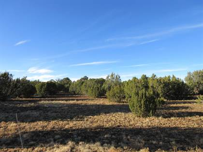 Lots And Land for sale in TBD AZ Hwy 61, Greater St. Johns, AZ, 85924