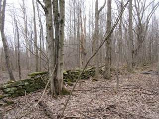 Land for sale in RT - 13, Pulaski, NY, 13144