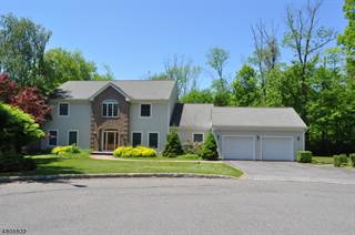 Single Family for sale in 9 NUTHATCH CT, Panther Valley, NJ, 07840