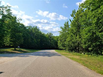 Lots And Land for sale in 61 DEER RUN, Kinross, MI, 49752