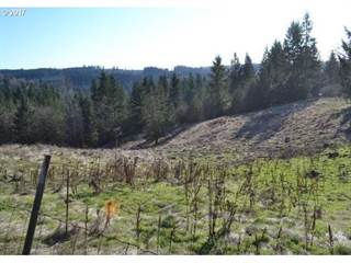 Land for sale in 24990 S New Kirchner RD, Mulino, OR, 97045