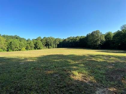 Lots And Land for sale in 4664 Pickneyville Rd, Woodville, MS, 39669