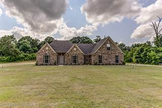 Single Family for sale in 156 Oak Manor Drive, Looxahom, MS, 38618