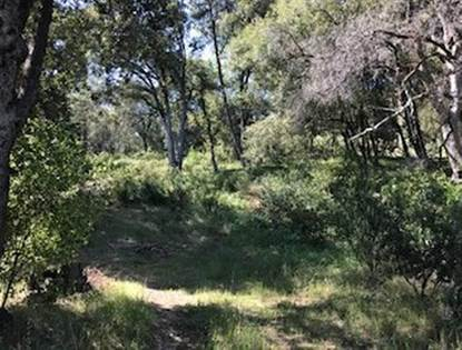 Lots And Land for sale in 0-Parcel 2 Worman Road, Ahwahnee, CA, 93601