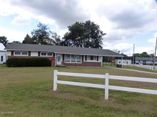 Single Family for sale in 180 Ullin Ave, Ullin, IL, 62992