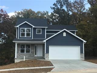 Single Family for sale in 10424 Dys Drive, Hillsboro, MO, 63050
