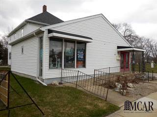 Comm/Ind for sale in 611 N MONROE ST, Monroe, MI, 48162