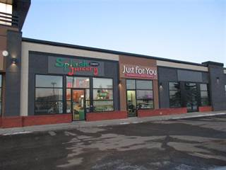 Comm/Ind for sale in 19 BELLEROSE DR, St. Albert, Alberta, T8N5C9