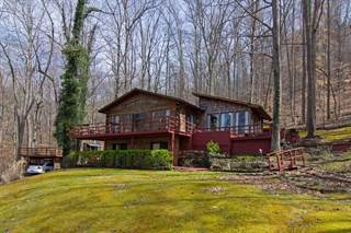 Single Family for sale in 373 Muddy Creek Mountain Rd, Alderson, WV, 24910
