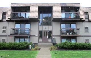 Condo for sale in 9841 Sunrise Blvd P24, North Royalton, OH, 44133