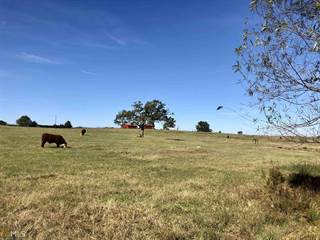 Farm And Agriculture for sale in 531 Dennis Smith Rd, Pine Mountain, GA, 31822