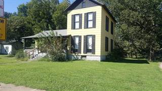 Single Family for sale in 219 Division, Du Quoin, IL, 62832