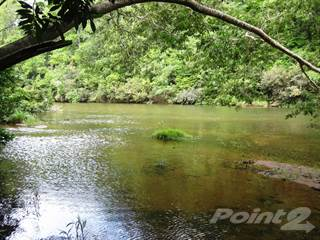 Farm And Agriculture for sale in 30 Acres on Macal River with home, Cristo Rey, Cayo