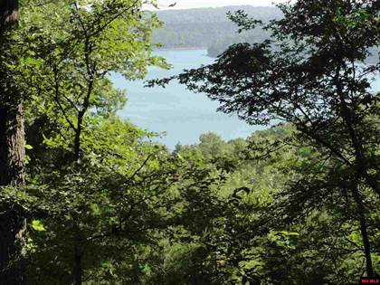 Lots And Land for sale in Lot 37 CR 139, Elizabeth, AR, 72531