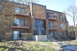 Condo for sale in 722 Tipperary Court 1B, Schaumburg, IL, 60193