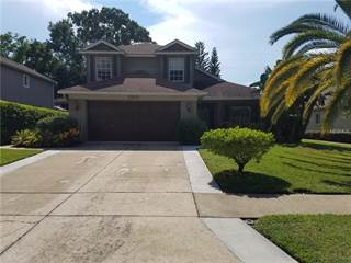 Single Family for sale in 2952 SHANNON CIRCLE, Palm Harbor, FL, 34684
