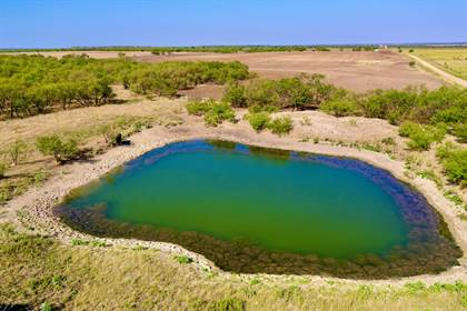 Lots And Land for sale in TBD FM 923, Throckmorton, TX, 76483