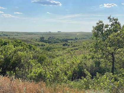 Farm And Agriculture for sale in Lots 3-4 3-21N-25W, Shattuck, OK, 73858