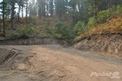 Lot/Land for sale in Tax 115 Lemmon Lane , Orchard, ID, 83716