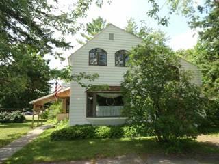 Single Family for sale in 102 N Birch, Ewen, MI, 49925