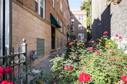Apartment for rent in 722 W Barry Ave, Chicago, IL, 60657