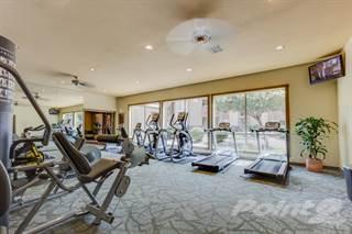 Apartment for rent in Galleria Palms - Marina Reno, Tempe, AZ, 85282