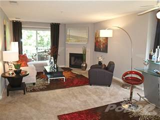 Apartment for rent in The Vinings Apartments - The Manor - 3 BR 2 BA, Meadowbrook, VA, 23234