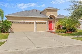 Single Family for sale in 20016 OAKFLOWER AVENUE, Tampa, FL, 33647