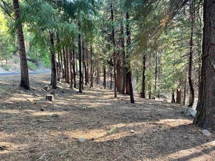 Lots And Land for sale in 1587 Shoshone Drive, Arnold, CA, 95223