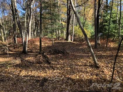 Lots And Land for sale in 6575 Myrtelle Dr., Caseville, MI, 48725