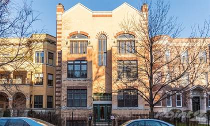 Apartment for rent in 4101 N Kenmore Ave, Chicago, IL, 60613