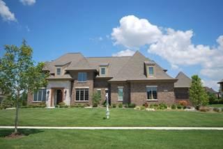 Single Family for sale in 39W152 Longmeadow Lane, Saint Charles, IL, 60175