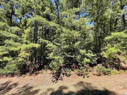 Lots And Land for sale in Tbd Waterridge Drive, Avinger, TX, 75630