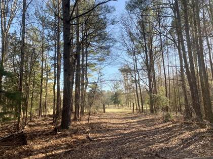 Lots And Land for sale in 1351 ML King Jr DR, Eupora, MS, 39744