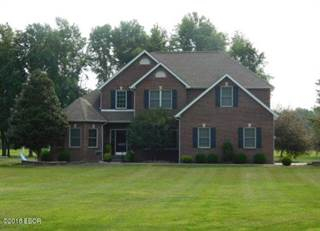 Single Family for sale in 4625 Cj Heck Road, Salem, IL, 62881