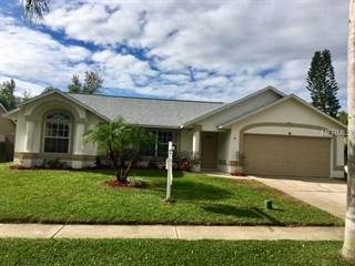 Single Family for sale in 824 BRIGHT MEADOW DRIVE, Lake Mary, FL, 32746
