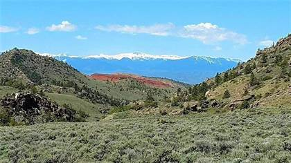 Farm And Agriculture for sale in 471 Pryor Mountain Road, Bridger, MT, 59014