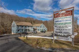 Comm/Ind for sale in 168 New Milford Turnpike 1C, Washington, CT, 06777