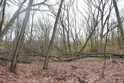 Lots And Land for sale in 1042-1056 N Wayne Street, Gary, IN, 46403