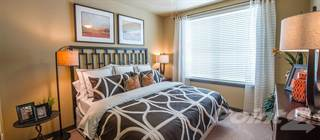 Apartment for rent in Cityscape at Market Center - Ash, Plano, TX, 75075