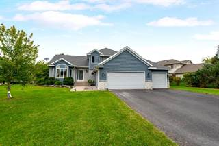 Single Family for sale in 13311 Hynes Road, Rogers, MN, 55374